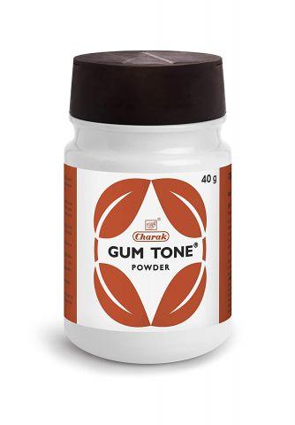 Зубной порошок Гам Тоун 40 г Charak Pharma Gum Tone Powder 40 g