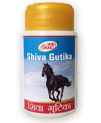 Shri Ganga Shiva Gutika